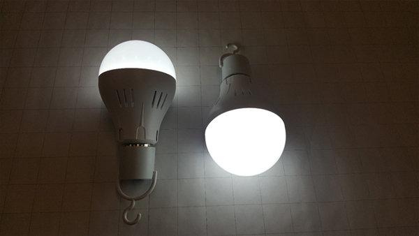 Sample Motion Sensor Smart Light Bulbs - Independently Lighted